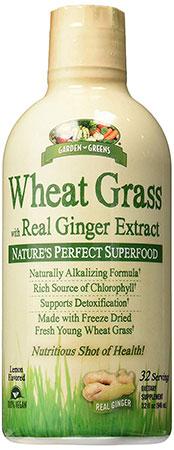 Garden Greens Wheatgrass Shot