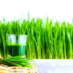 Wheatgrass Shot In A Basket