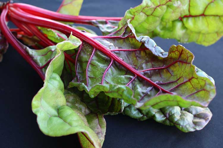 Raw Swiss Chard