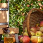 Freshly Squeezed Apple Juice