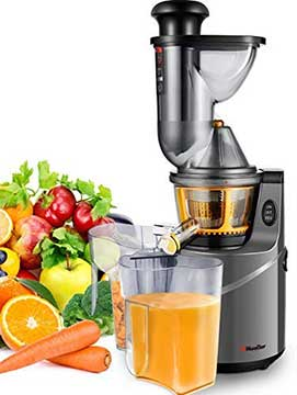 Mueller Austria Juicer For Apples