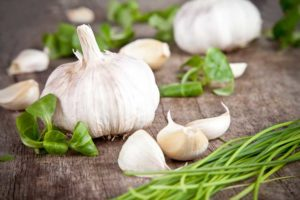 Garlic about to be juiced