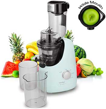 COMFEE Masticating Juicer with Ice Cream Maker
