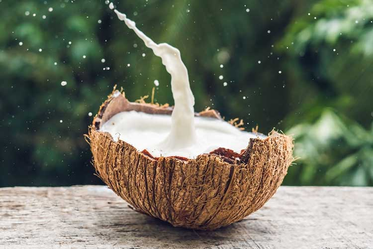 coconut milk in a coconut